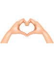 heart from hands isolated vector image vector image