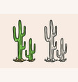 nopal or mexican cactus tropical green plant vector image