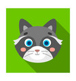 raccoon muzzle icon in flat style isolated on vector image vector image