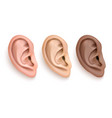 realistic human ear iocn set closeup vector image
