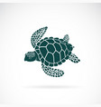 turtle design on a white background wild animals vector image vector image