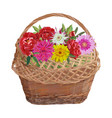 wicker basket with flowers isolated