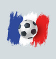 ball for soccer with france flag vector image