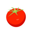bright red tomato closeup card vector image vector image