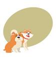 cute funny dog characters - japanese akita inu vector image vector image