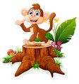 cute monkey posing on tree stump vector image vector image