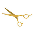 gold hair scissors vector image vector image