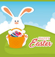 rabbit with eggs painted easter celebration vector image