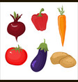 vegetables white background vector image vector image