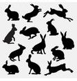 big set rabbit isolated transparent background vector image