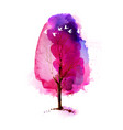 blossoming spring watercolor pink tree and flock vector image