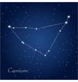 Capricorn constellation vector image
