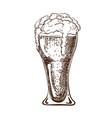 hand drawn pint beer full wheat beer vector image vector image