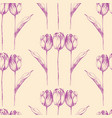 hand drawn tulip flowers seamless pattern vector image vector image