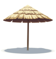 Palm Leaf Beach Umbrella vector image vector image