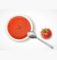 tomato soup realistic composition vector image vector image