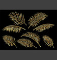 tropical set of golden hand drawn palm leaves vector image vector image