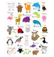 animal zoo abc alphabet cute cartoon set baby vector image