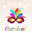 Colorful carnival mask with feathers with text vector image vector image