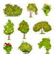 flat set of roses bushes green shrubs with vector image