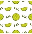 Hand drawn lime seamless pattern vector image vector image