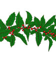 horizontal seamless pattern holly ilex branch vector image