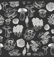 mushrooms seamless pattern hand drawn on chalk vector image