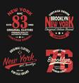 set new york brooklyn vintage print for t-shirt vector image vector image