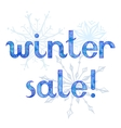 Winter sale advertising background vector image vector image