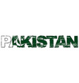 word pakistan with pakistani flag under it vector image vector image