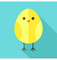 Yellow bird chicken vector image