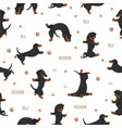 yoga dogs poses and exercises dachshund seamless vector image vector image