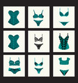 fashion bra sets with different styles of bra and vector image