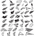 43 wing types vector image