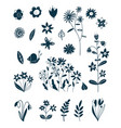 decorative elements spring and summer plants vector image vector image