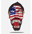 football fan from USA vector image vector image