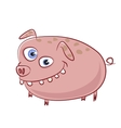 funny and crazy caricature pig character vector image