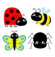 insect set ladybug ladybird bee bumblebee vector image vector image