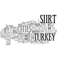 siirt word cloud concept vector image vector image