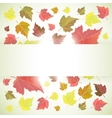 Autumn banner or background with leaves vector image