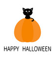 black cat sitting on pumpkin cute cartoon kawaii vector image vector image