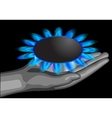 gas on palm vector image