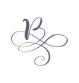 hand drawn calligraphic floral b monogram vector image