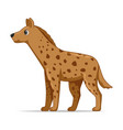 hyena animal standing on a white background vector image vector image