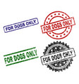scratched textured for dogs only seal stamps vector image vector image