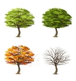 Trees in four seasons vector image