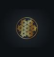 antahkarana gold mandala ancient symbol healing vector image vector image