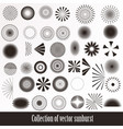 collection of retro sunbursts for design vector image