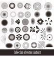 collection retro sunbursts for design vector image