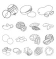 different kinds of nuts outline icons in set vector image vector image